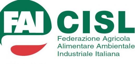 Fai Cisl Logo nuovo