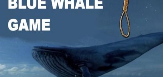 blue-whale-game-e1494877346586
