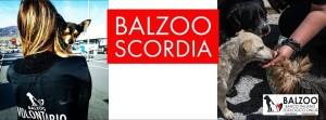 Balzoo Scordia foto